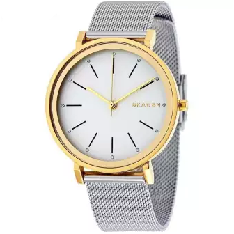 Skagen Hald Silver Dial Steel And Yellow Gold PVD Watch For Women-SKW2508